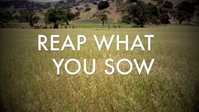 Image result for you reap what you sow