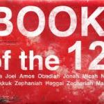 The Holy Spirit in the Book of the Twelve
