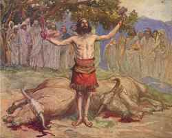 Saul cuts up his oxen to summon Israel. This account vividly recalls Judges 19.