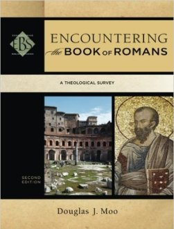 In this introductory book on Romans Doug Moo makes some good points about why Paul is not describing the Christian in Romans 7:14-25.