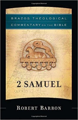 The Brazos Theological Commentary on 2 Samuel is available at Amazon USA / UK