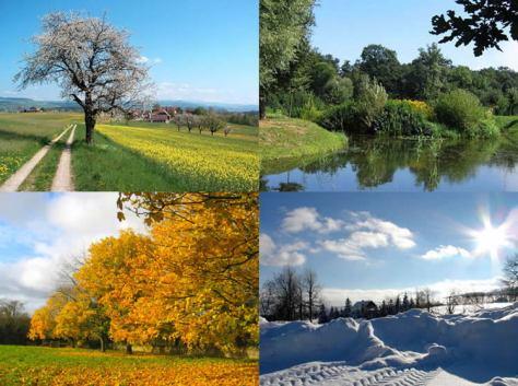 Changing seasons affected the Israelite diet