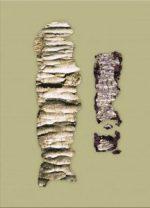 ketef-hinnom-ancient-amulets-unrolled