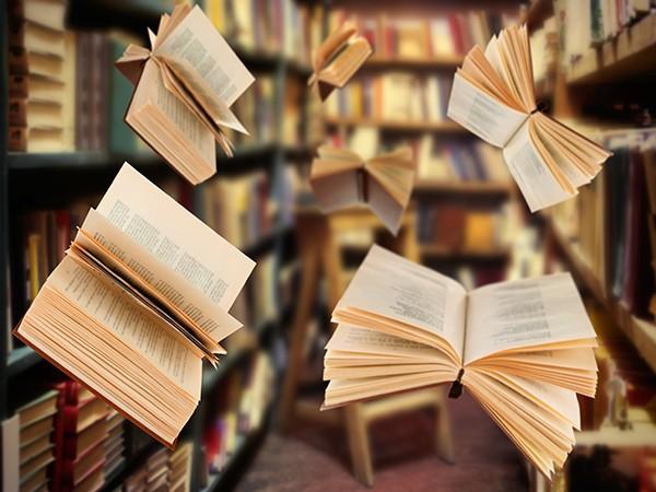 Bean Bags Book Readers
