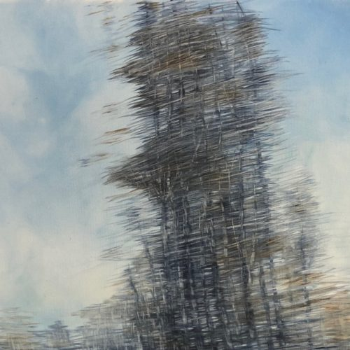 M.R.Colombo, Vento n.2 - 2018 50x60 cm