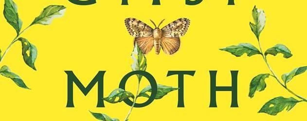 Gypsy Moth Summer by Julia Fierro