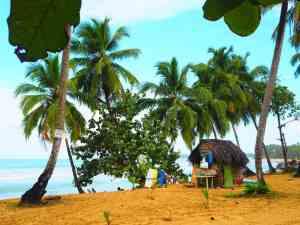 las terrenas playa coson
