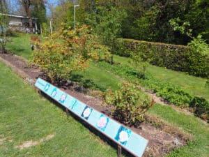 jardin des roses berne