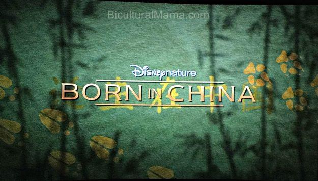 Bicultural Mama Born in China