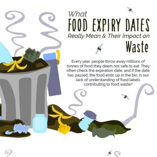 What Food Expiration Dates Really Mean and Impact on Waste
