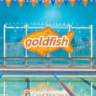 Goldfish Swim School Holiday Package