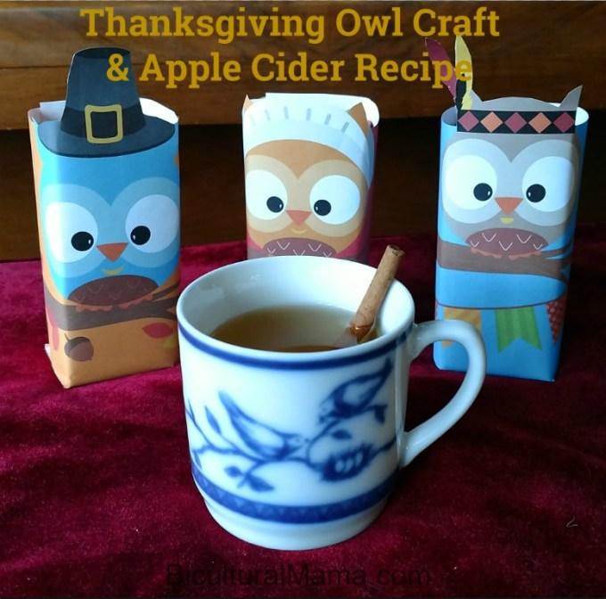 Juicy Juice Thanksgiving Owl Craft Apple Cider Recipe