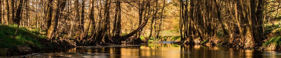 cropped-river-2271621_1920.jpg