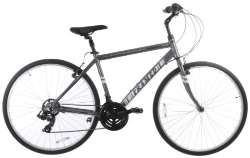 Framed Elite 1.0 CT Men's Bike Silver/White/Black 19in