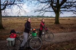 Cycling Veluwe