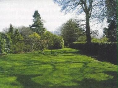 Upper Back Garden in 2001