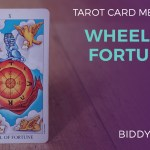Wheel Of Fortune Tarot Card Meanings Biddy Tarot