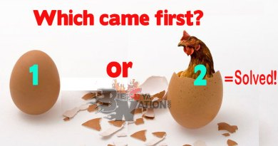 Which came first, the Chicken or Egg?