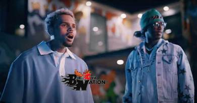 Chris Brown ft Young Thug Say You Love Me Music Video