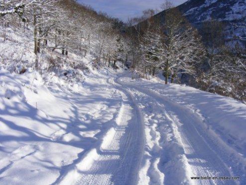 hiver 2010 028