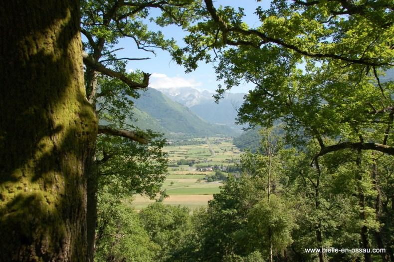 Vue sur la vallée d'Ossau