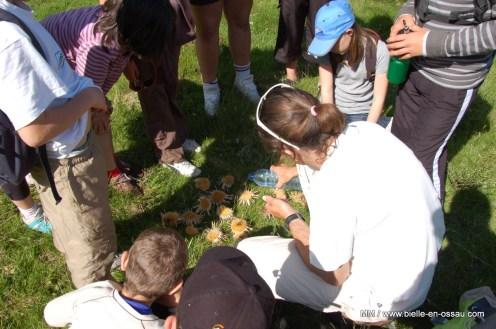 ecole-bielle-2011 (133)