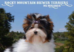 Rocky Mountain's Ms Miranda