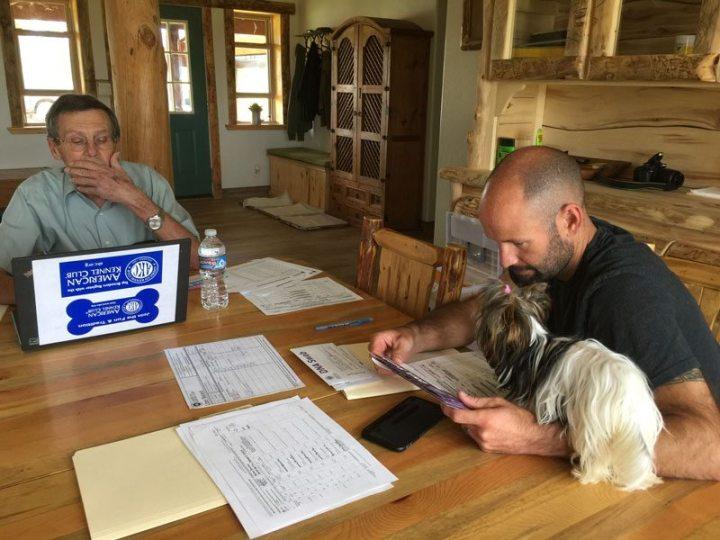 Rocky Mountain Biewer Terriers AKC Inspection
