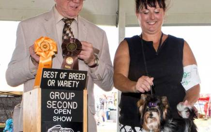 Rocky Mountain's Sir Remington wins Best of Breed