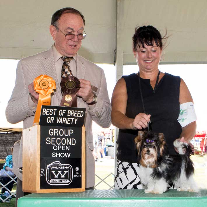Rocky Mountain;s Sir Remington wins Best of Breed