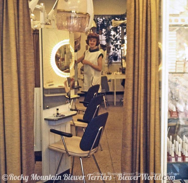 Hair Salon Biewer in Cologne