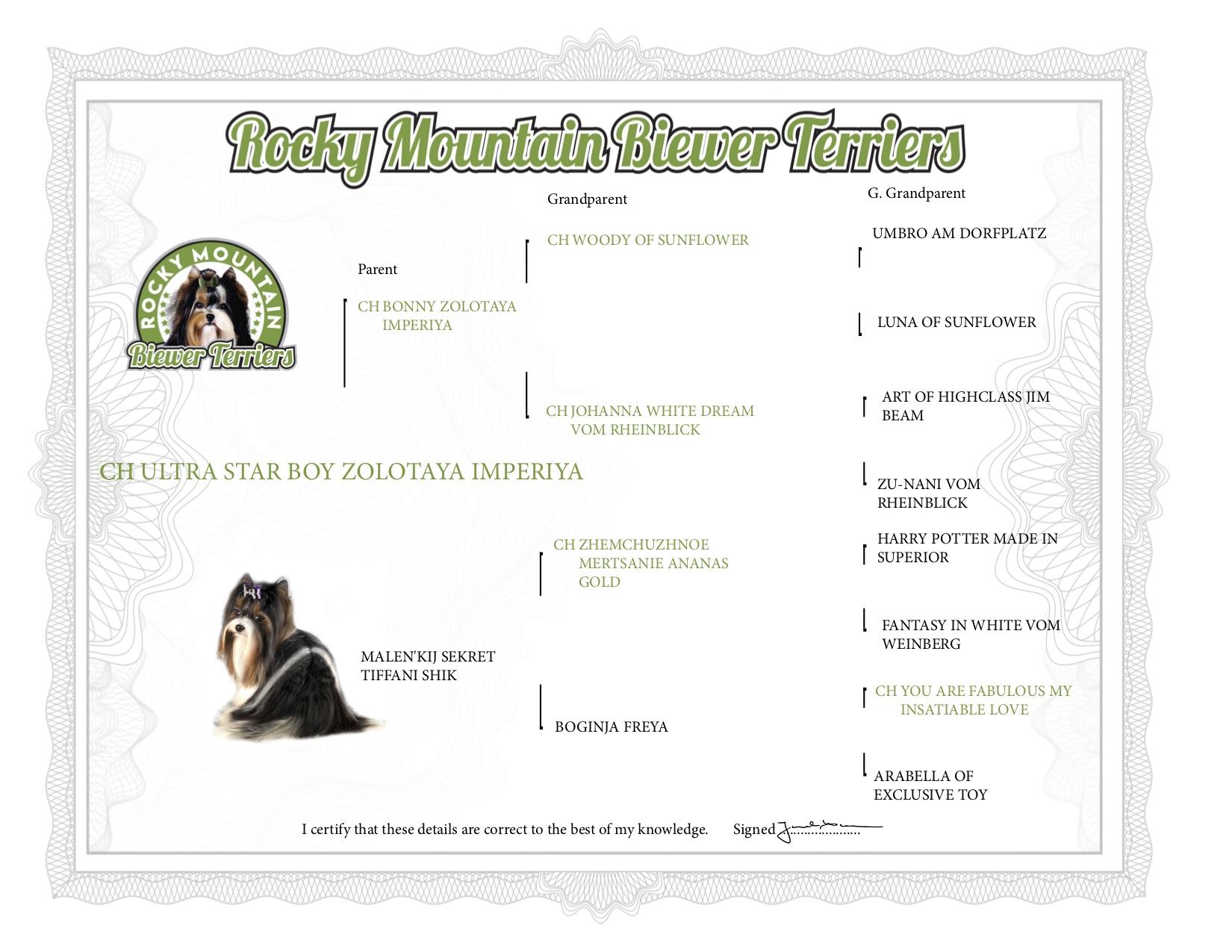 Pedigree of Biewer Terrier Ultra Star Boy Zolotaya Imperiya