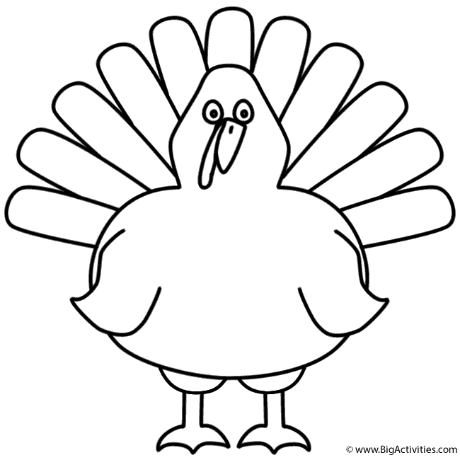 turkey front coloring page birds
