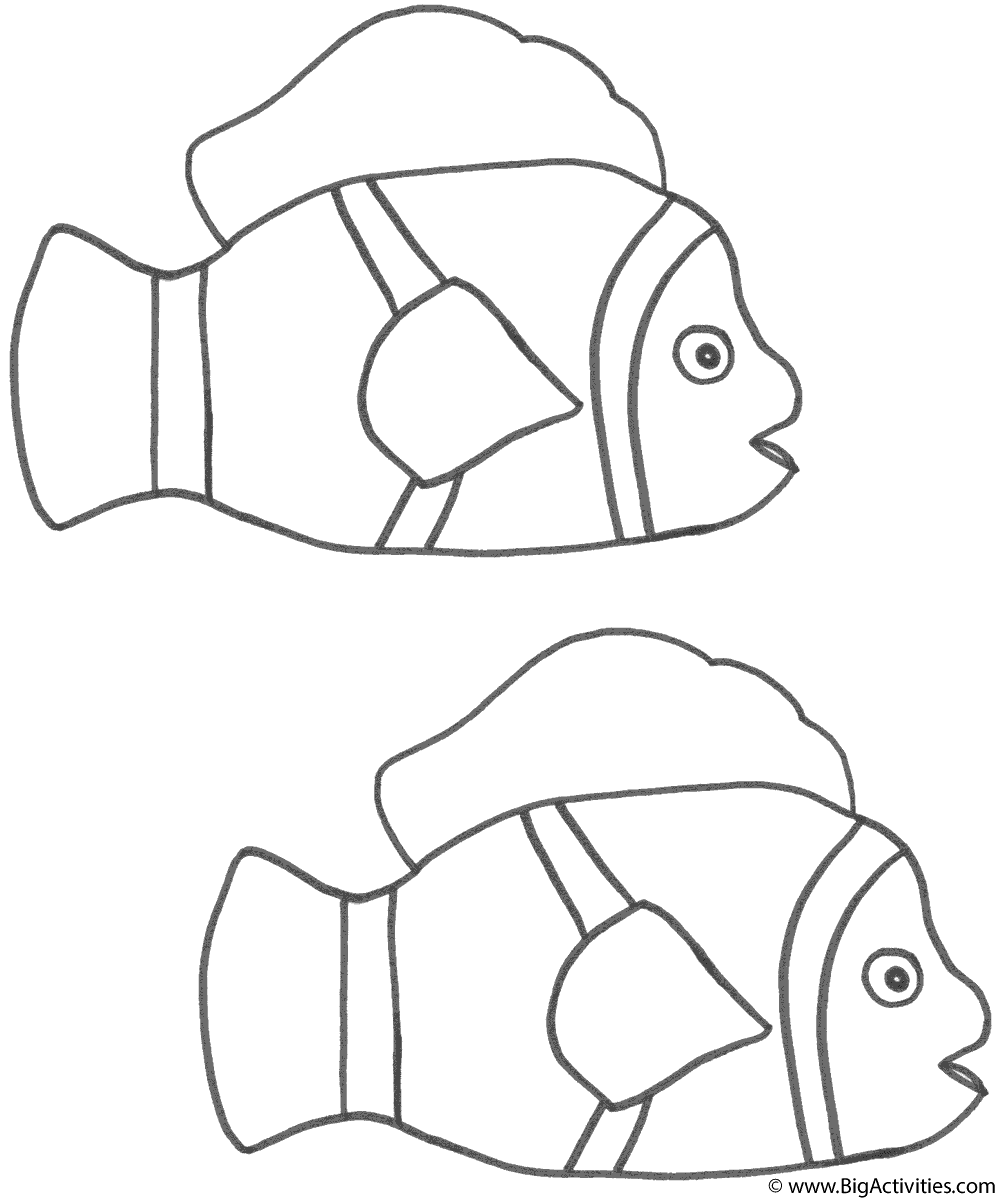 two clown fish coloring page fish