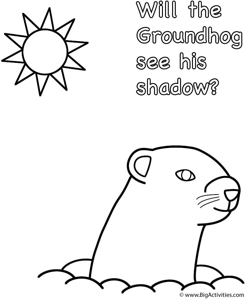 groundhog coloring page printable pictures animal groundhog