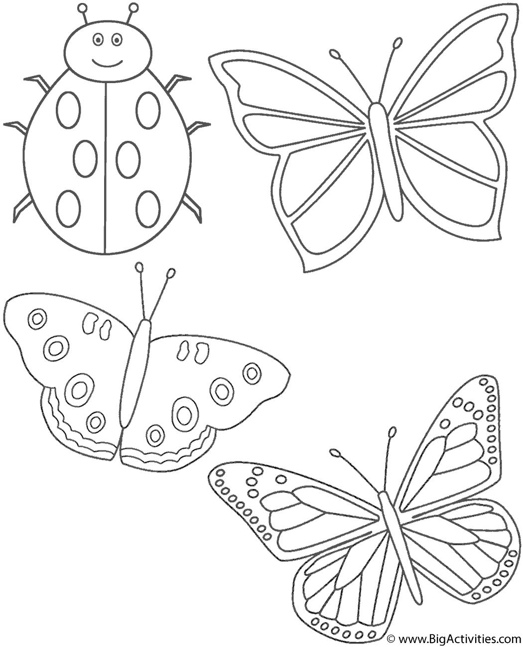 Three Butterflies And Ladybug