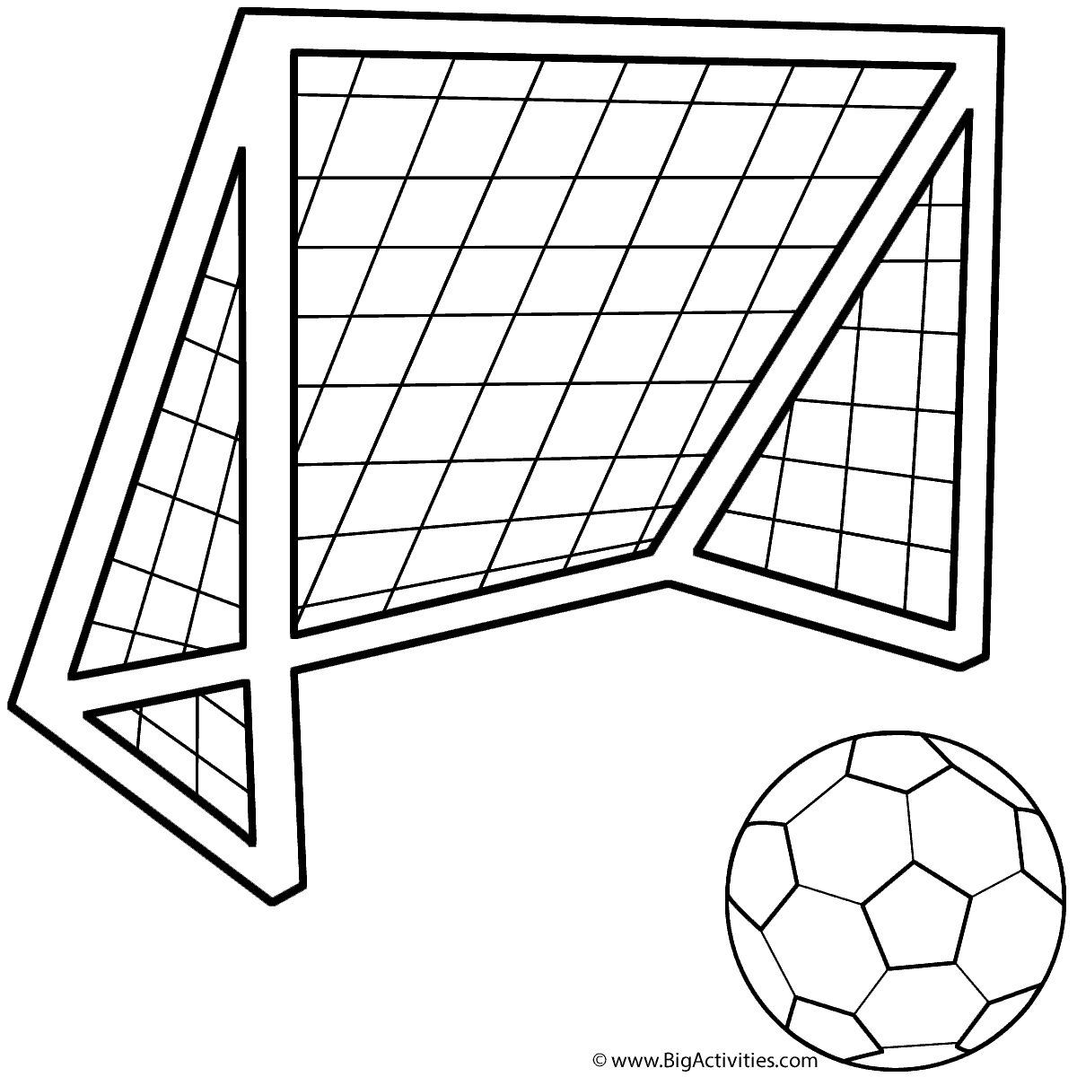 Soccer Ball With Soccer Net