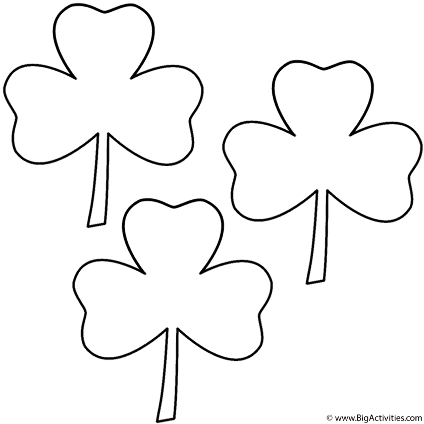three leaf clovers (3 clovers)  coloring page (st