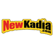 NewKadia   The World's largest online comic book store