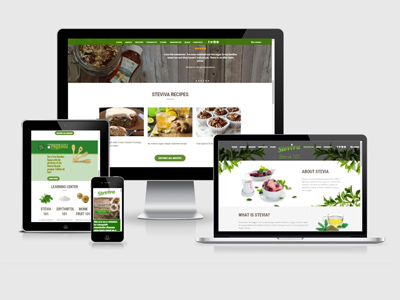 wellness website design