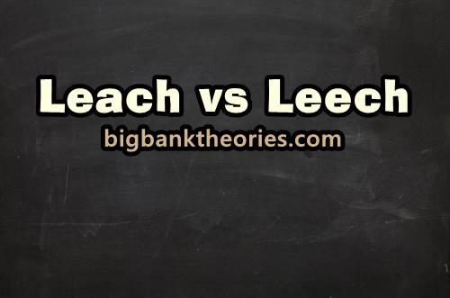 Contoh Kalimat Menggunakan Kata Leach Dan Leech