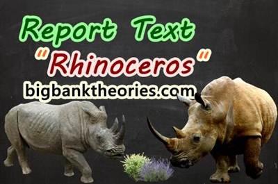Contoh Report Text Singkat Tentang Badak Beserta Artinya