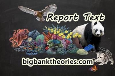 50 Contoh Report Text Singkat Tentang Hewan Beserta Artinya