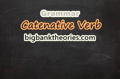 Catenative Verb