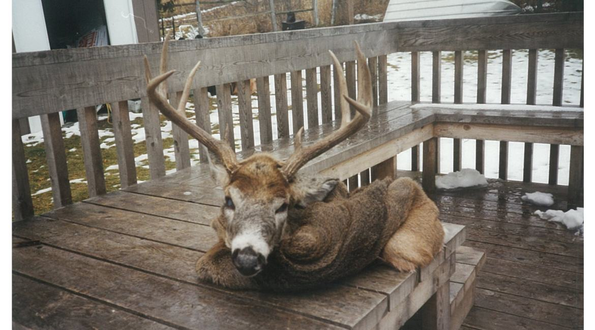 A Hunting Story – The Old Hunting Chair