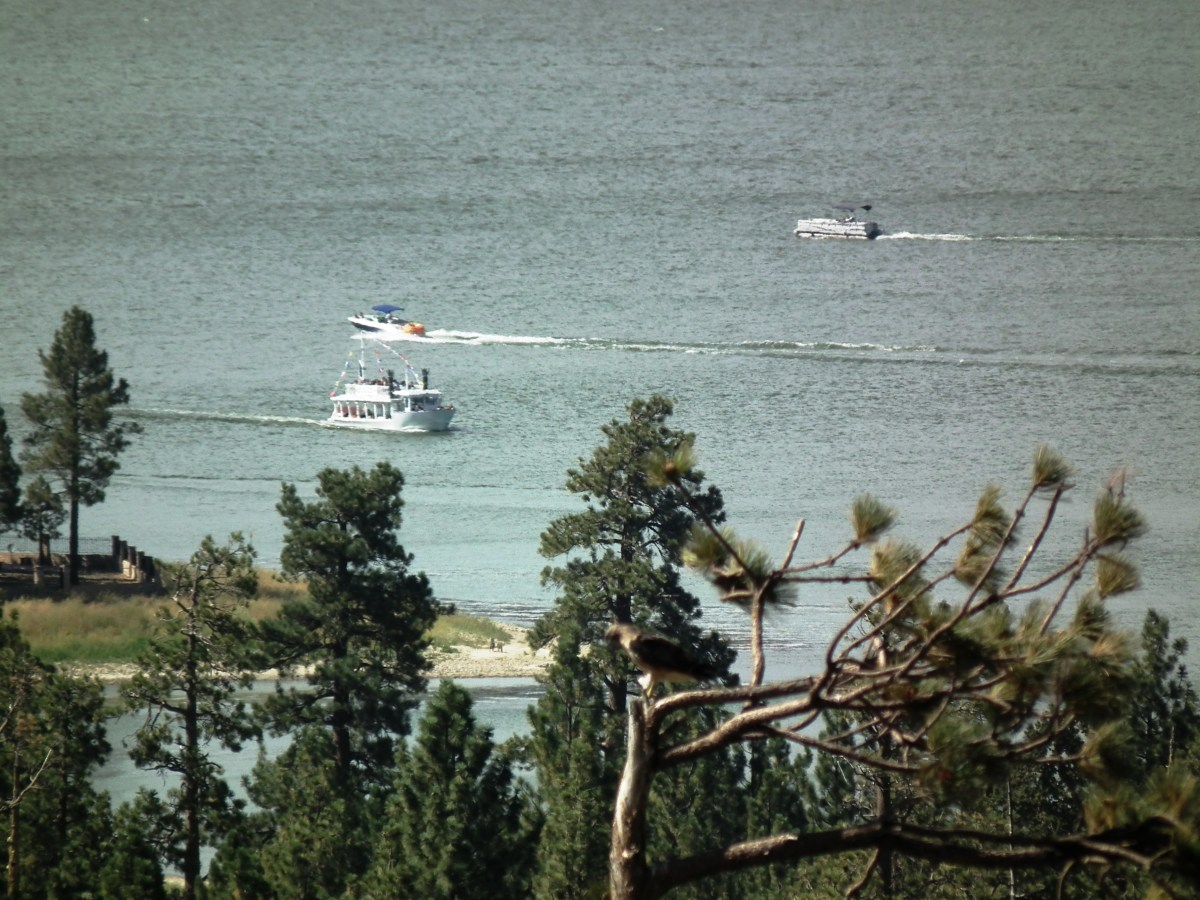 View of Big Bear Lake1