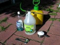white vinegar organic weed killer