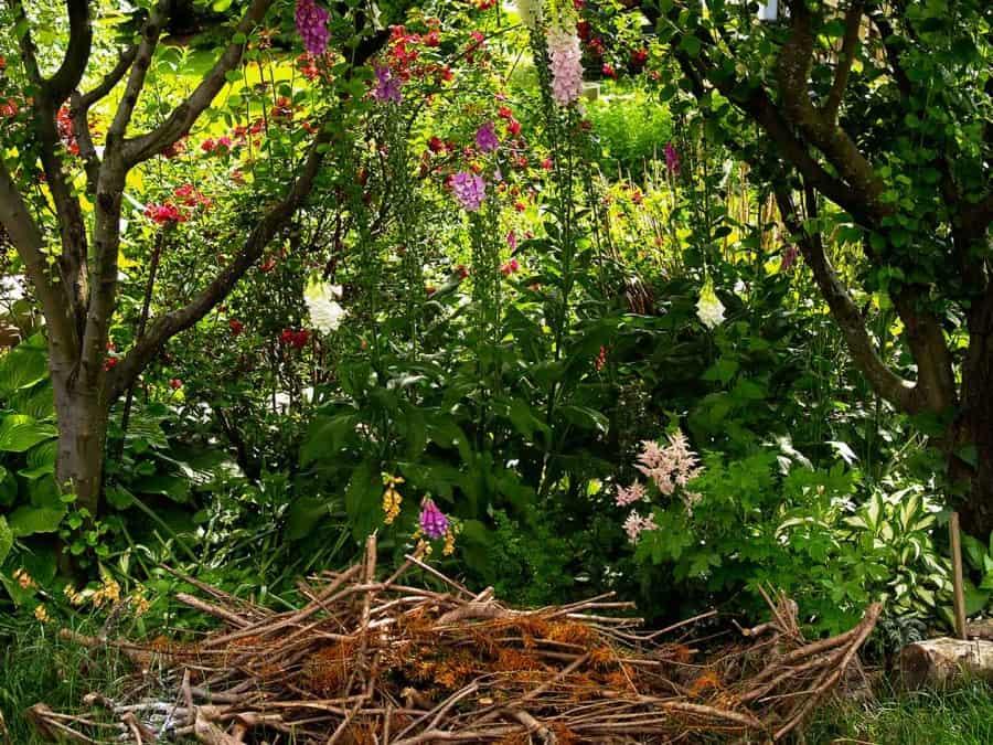 jardín sombreado