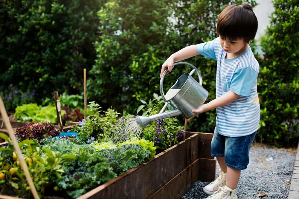 enseñar a los niños a la jardinería