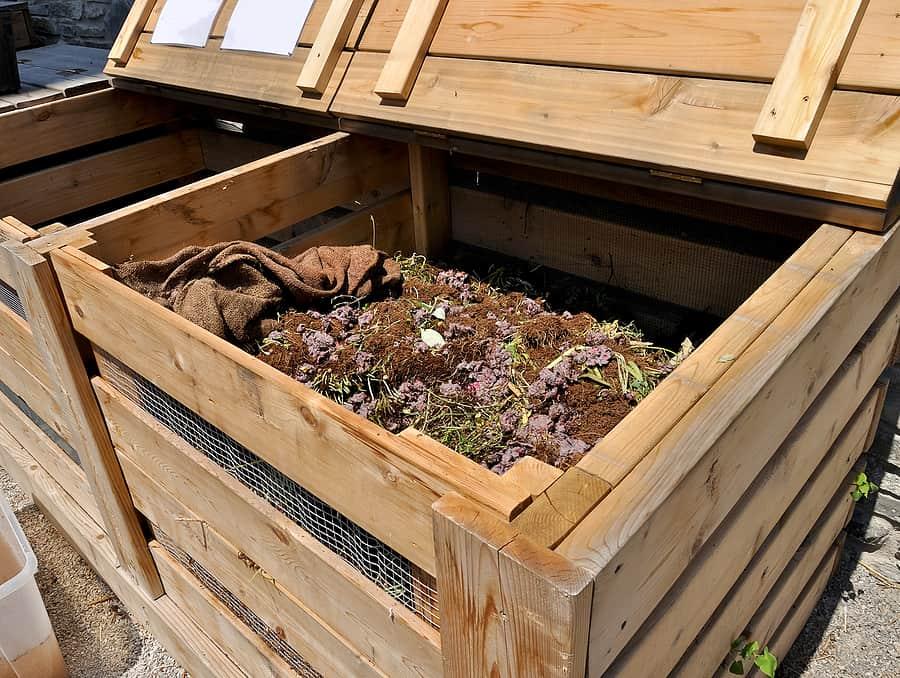 caja de composta
